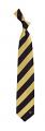 New Orleans Saints Tie Regiment